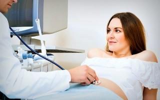 Что смотрят по УЗИ на 31-й неделе беременности: описание и таблица нормальных показателей